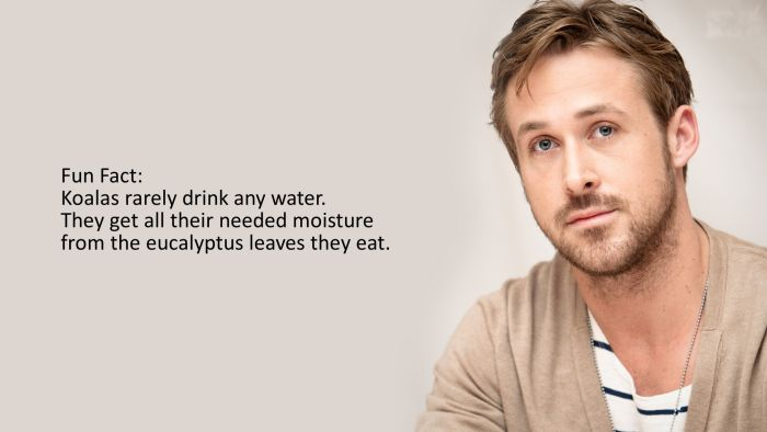Facts and Celebrities (20 pics)