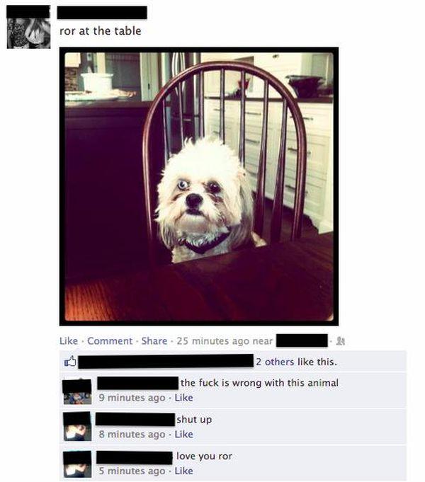 Facebook Gems (21 pics)