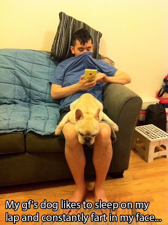 Why Dog Is Man's Best Friend. Part 2 (24 pics)
