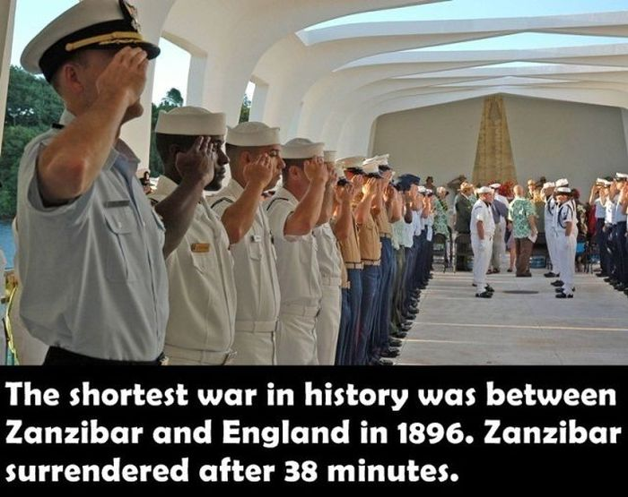 Fun Facts. Part 20 (19 pics)