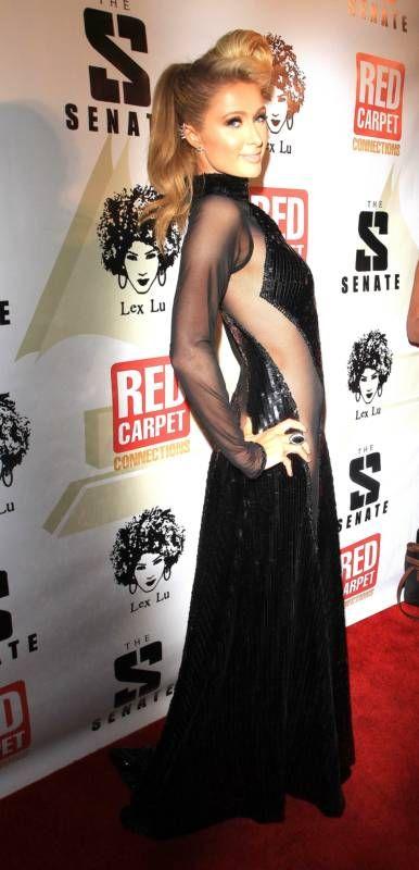 Paris Hilton's and Joanna Krupa's Grammy Dresses (18 pics)