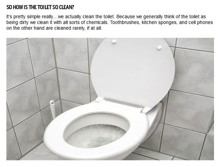 Things That Are Dirtier Than Your Toilet (25 pics)