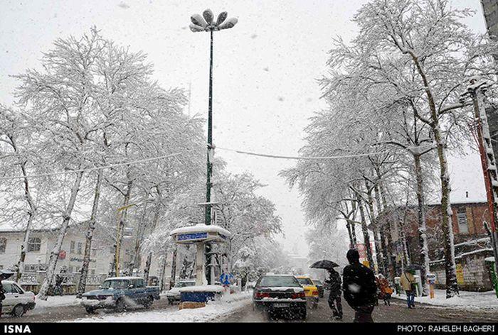 Snowstorm in Iran (45 pics)