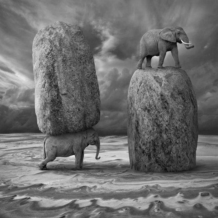 Surreal Photo Manipulations by Dariusz Klimczak (35 pics)