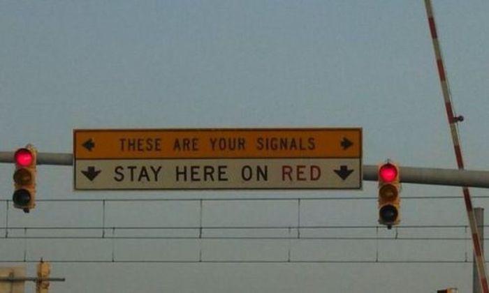 WTF Signs. Part 42 (35 pics)