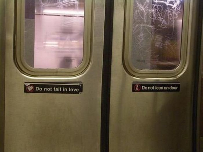 WTF Signs. Part 42 (35 pics)