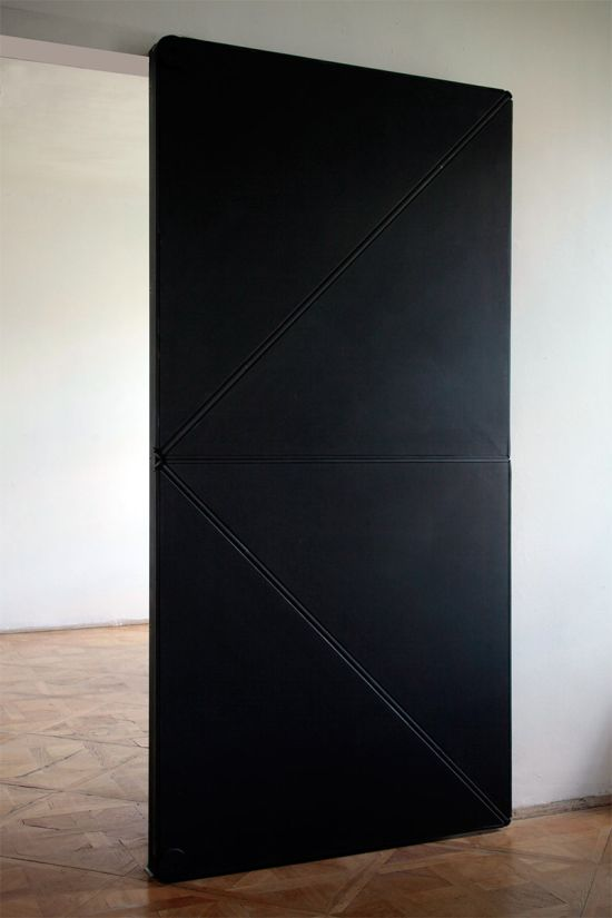 Evolution Door is the Coolest Door Ever (3 pics)
