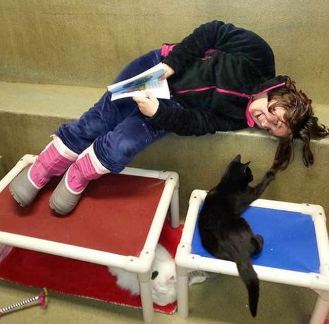 Children and Animals (10 pics)
