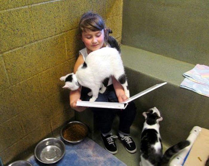 Children and Animals (10 pics)