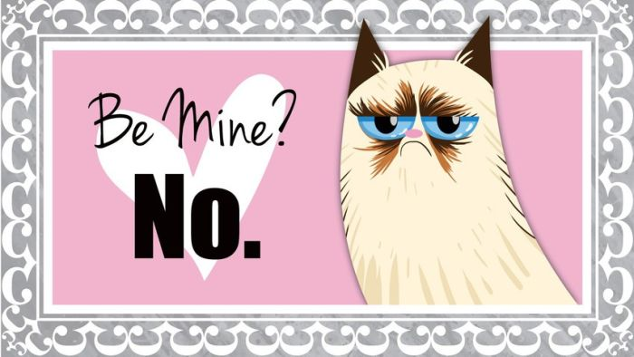 Valentine's Day Cards of the Grumpy Cat (18 pics)