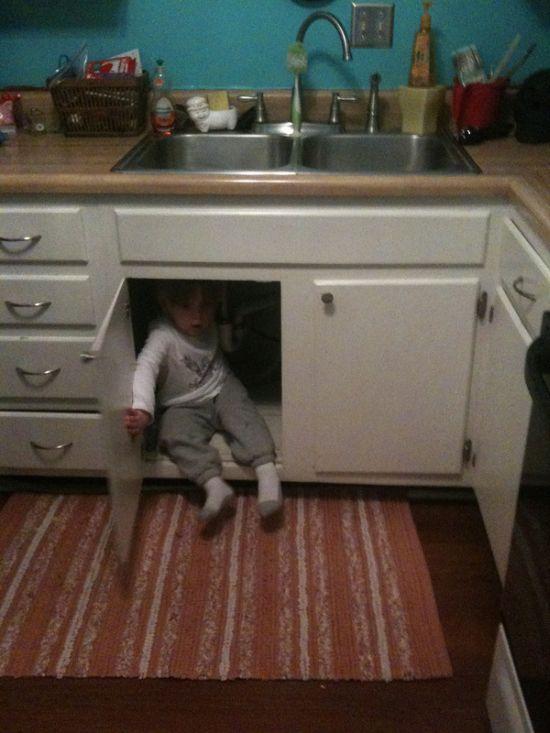 Afraid of a Vacuum Cleaner (6 pics)