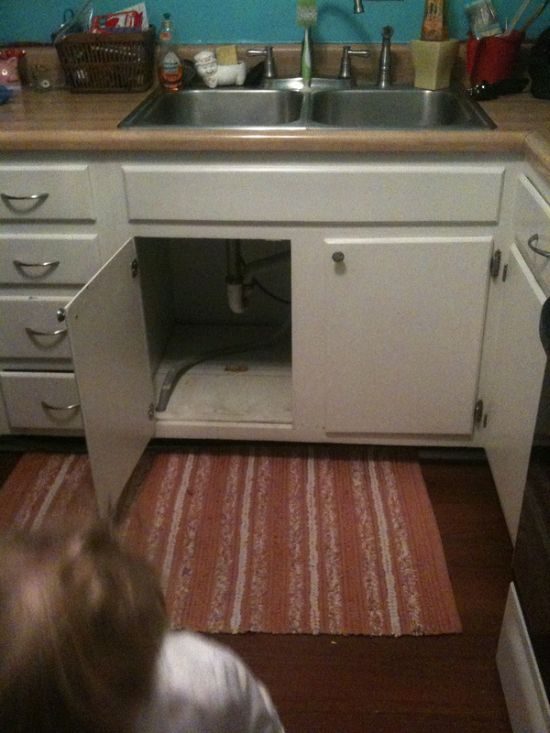 Afraid of a Vacuum Cleaner (6 pics)