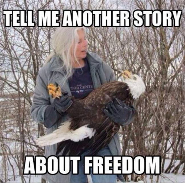 Canada Goose expedition parka outlet fake - 21 'Murica Memes To Keep Your Patriotism Flowing