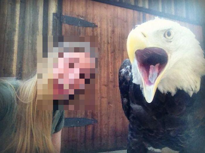 Girl vs Eagle (3 pics)