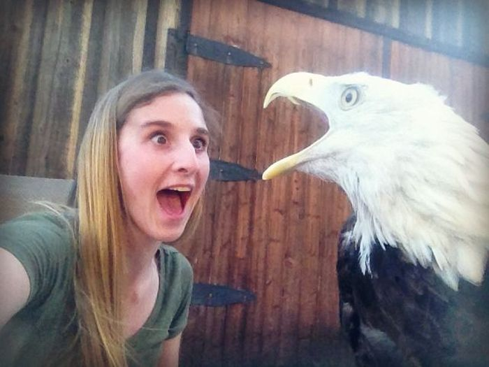 Girl vs Eagle (3 pics)