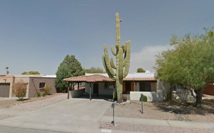 Saguaro Cactus Destroyed Carport with Three Cars (2 pics)