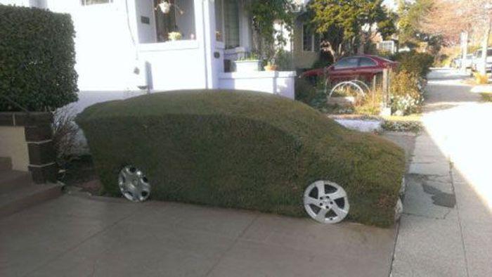 Car Pictures (60 pics)