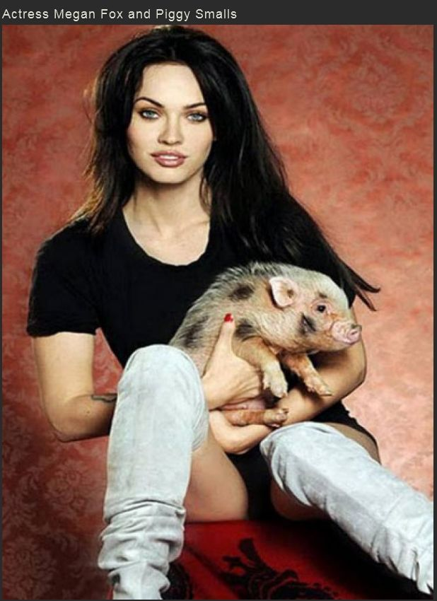 Famous People with Exotic Pets (20 pics)