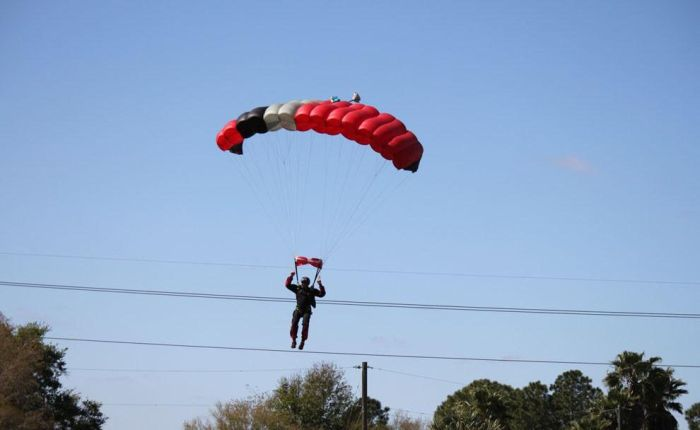 Skydiver Gets Hit by a Plane (15 pics)
