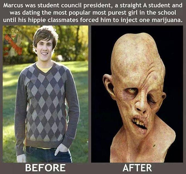 Marijuana Disinformation (20 pics)