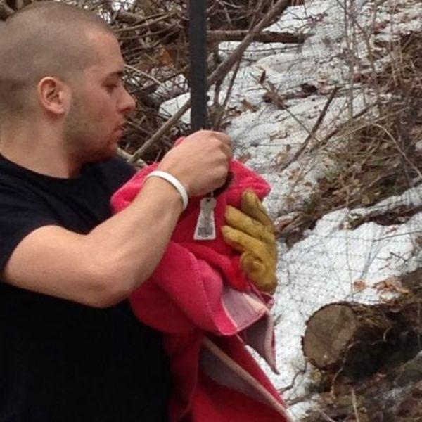 Saving an Owl (6 pics)