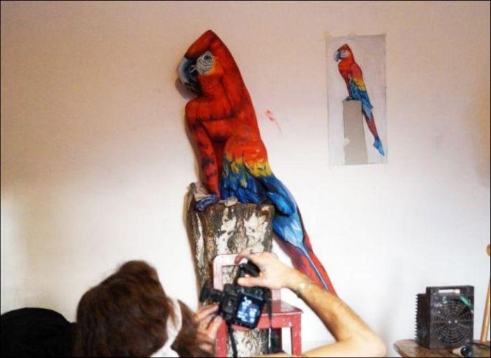 Amazing Body Art (4 pics)