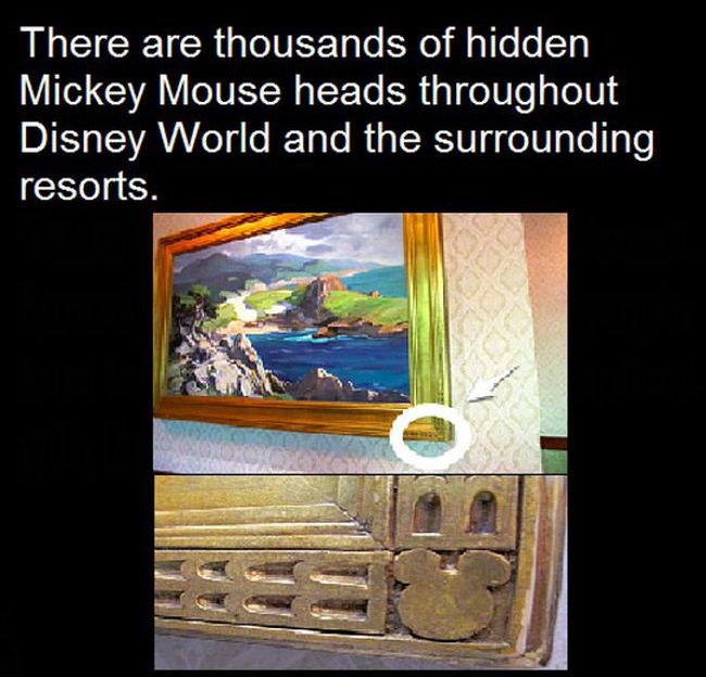 Interesting Facts About Disney Parks (10 pics)