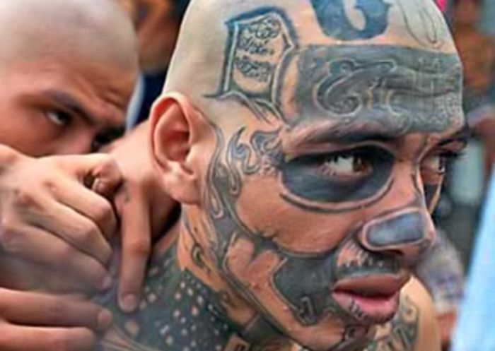 The Most Dangerous US Gangs (13 pics)