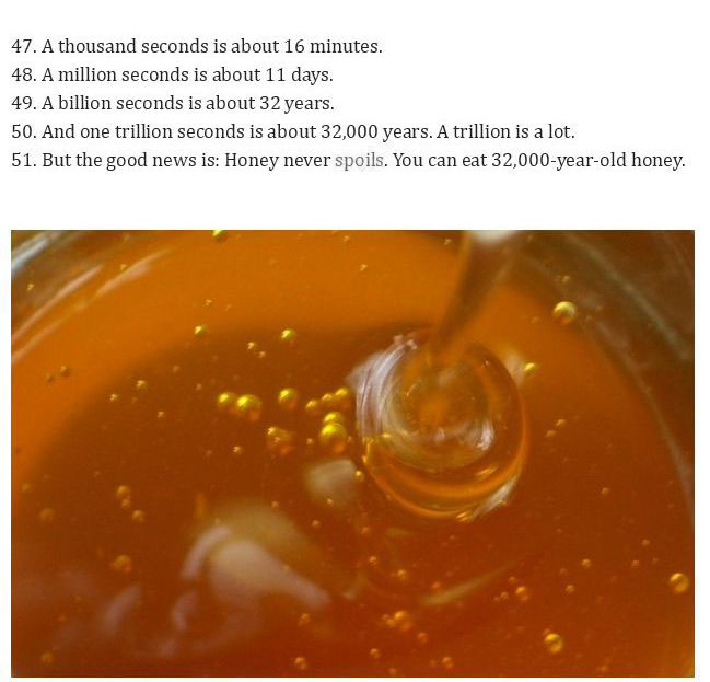 Unbelievable Facts That Are True (20 pics)