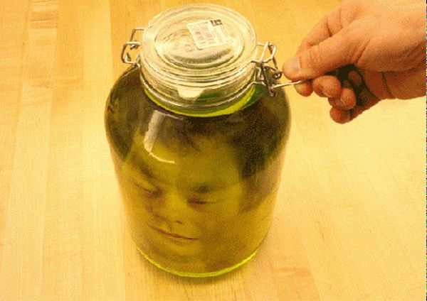 Head in a Jar Prank (5 pics)