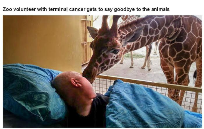 Powerful Pictures (21 pics)