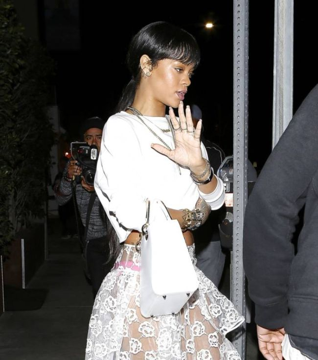 Rihanna Wearing a See Through Skirt (7 pics)