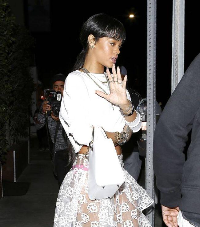 Rihanna Wearing a See Through Skirt (7 pics)