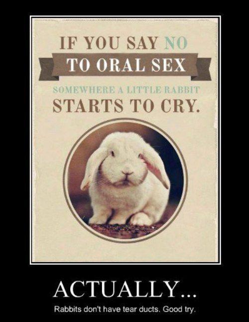 Funny Demotivational Posters (23 pics)