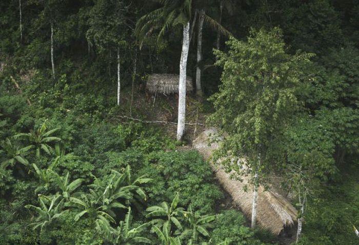 Startled Amazon Tribesmen (5 pics)