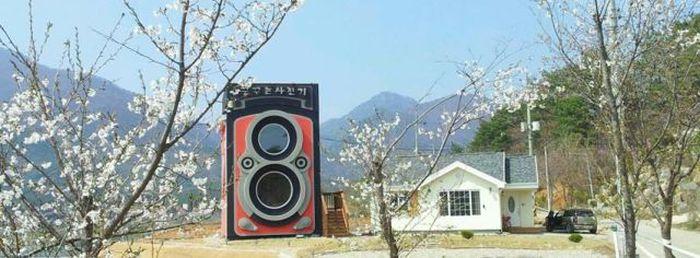 Vintage Camera Coffee Shop in South Korea (15 pics)
