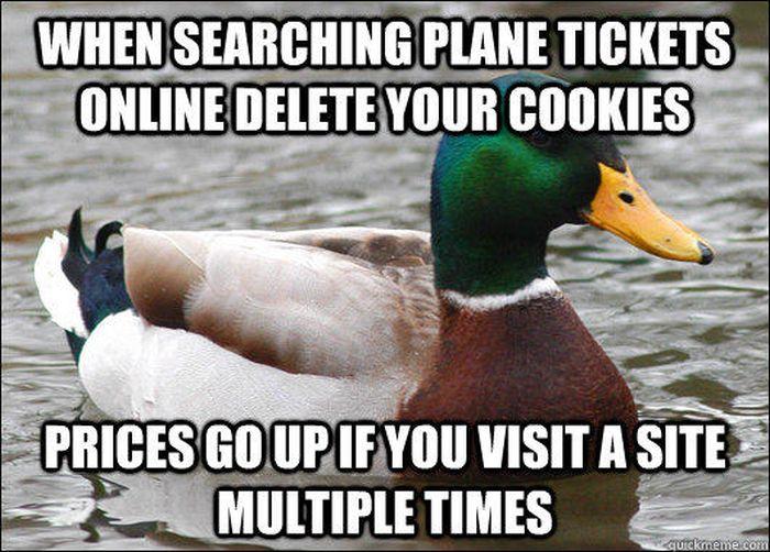 Actual Advice Mallard (27 pics)