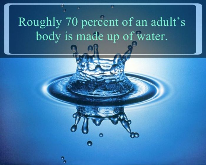 Interesting Facts about Water (25 pics)