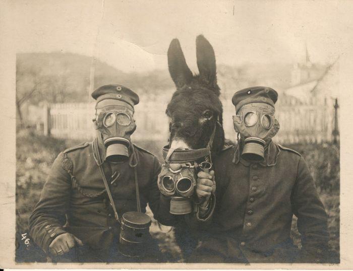 Rare Historical Photos (40 pics)