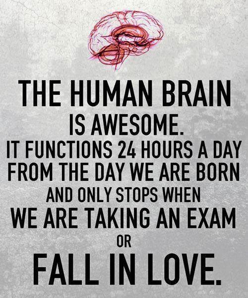So True (46 pics)