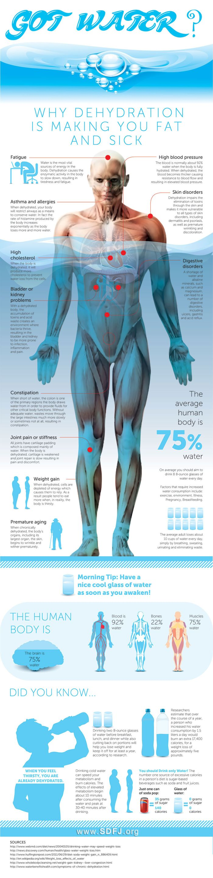 Why Dehydration Is Making You Fat And Sick (infographic)