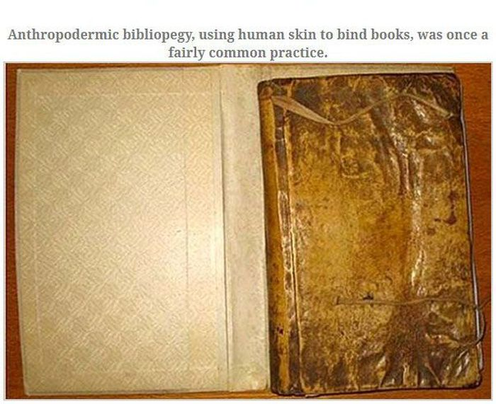 Skin Books from Harvard (4 pics)