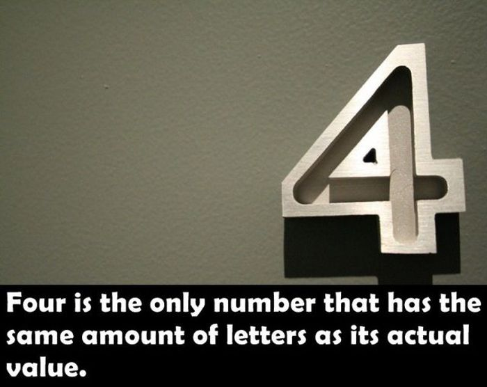 Cool Facts (25 pics)