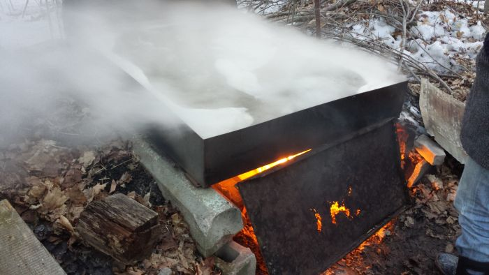 How to Make Maple Syrup (16 pics)