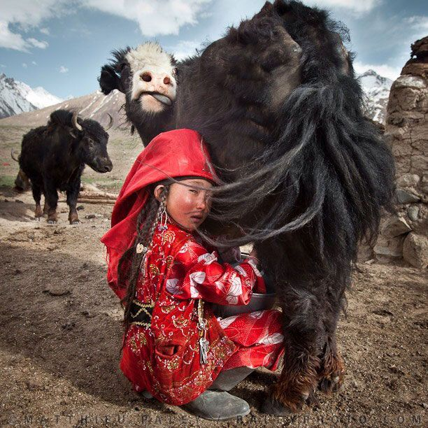 National Geographic on Instagram (39 pics)