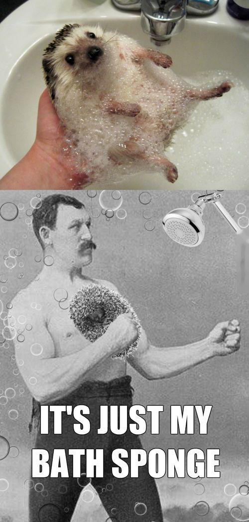 Acid Picdump (124 pics)