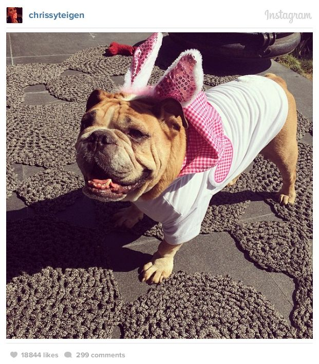 Celebrities Celebrating Easter (46 pics)