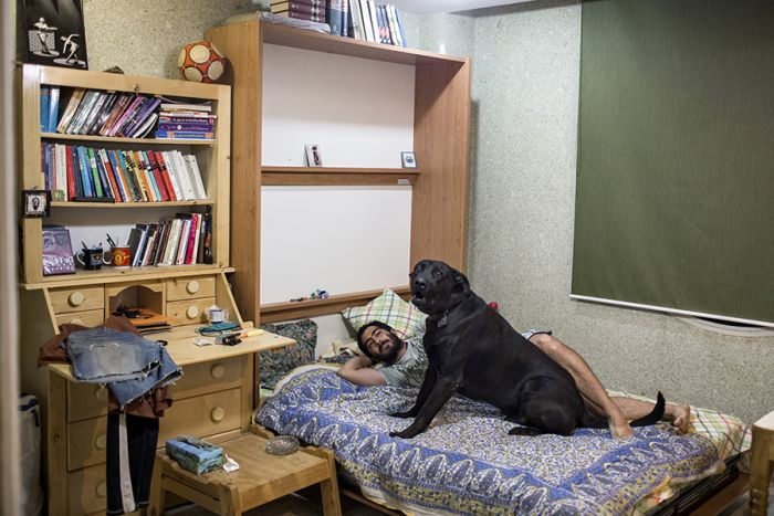 Get An Inside Look At What It's Really Like To Live In Iran (25 pics)