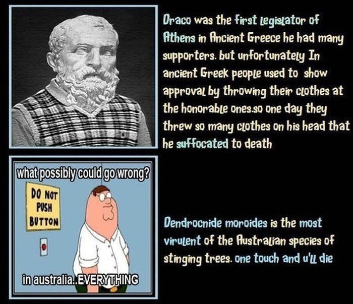 Unbelievable But True Facts. Part 7 (9 pics)