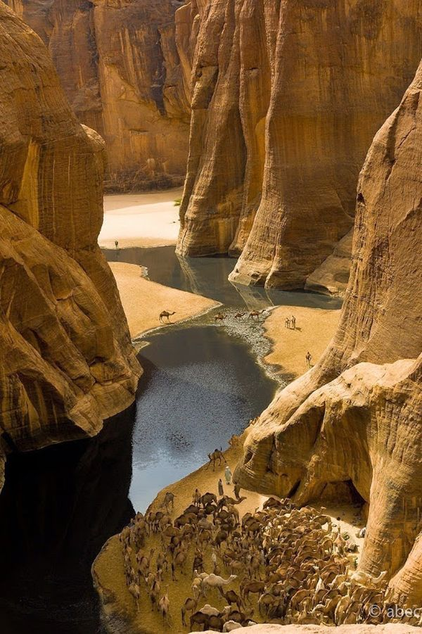 Amazing Wetlands In The Desert Of Chad (12 pics)